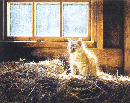 Росс Суилен. Котенок в сене
