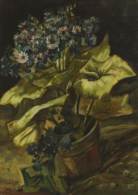 Vincent van Gogh. Cineraria in a flowerpot