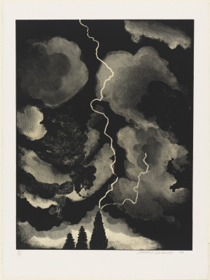 David Hockney. Lightning