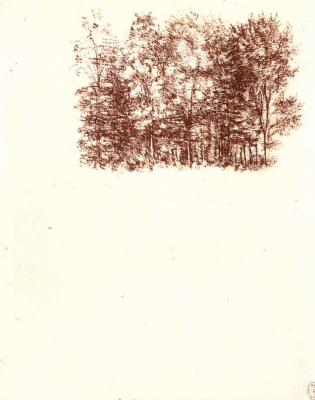 Leonardo da Vinci. Birch grove