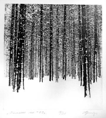 Анатолий Иванович Ярославцев. Зимний лес