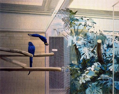 Жиль Эло. Синие птицы