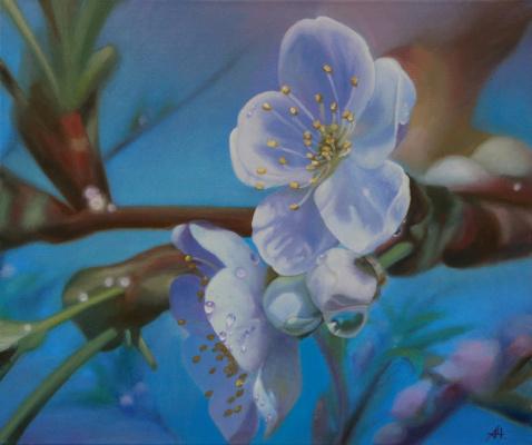 Alexey Chernov. Blooming apple tree