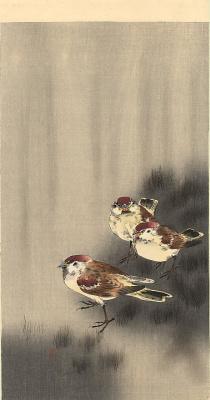 Охара Косон. Птицы 78