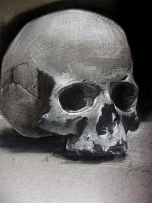 Alexander Giza-Ciobanu. Skull