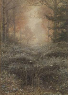 Forest landscape: the melting dew
