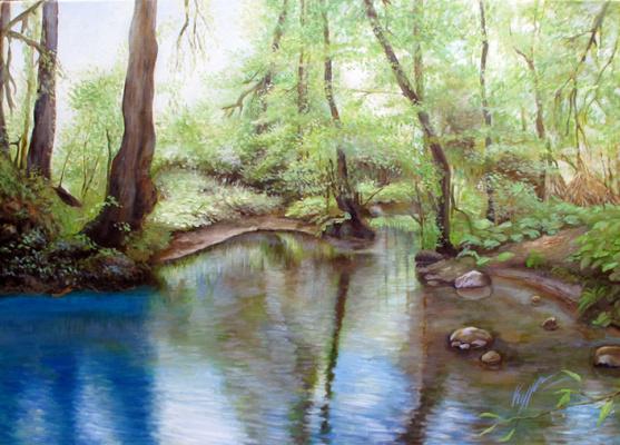 Alexander Pavlovich Kurganov. Magical lake