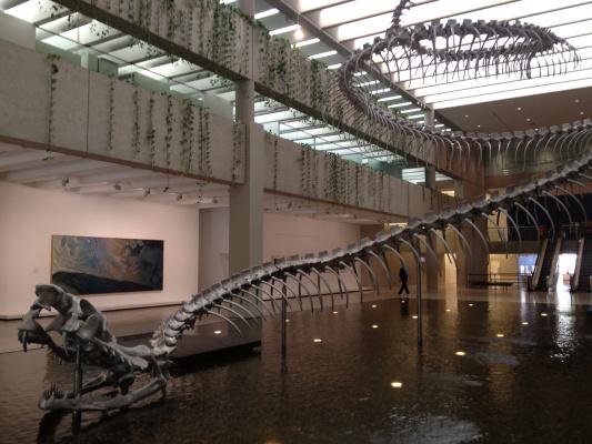 Huang Yongping. Skeleton of a giant snake
