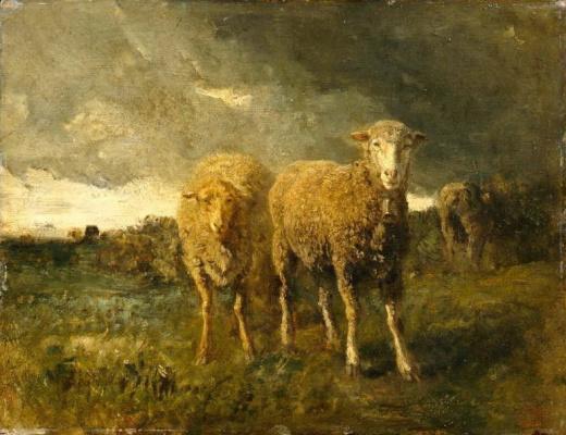 Констан Тройон. Овцы