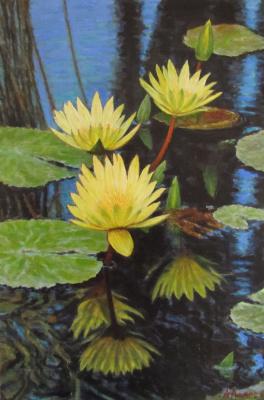Andrew Lumez. Lilies