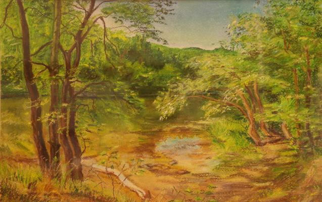 Irina Viktorovna Korotoyakskaya (Dronova). Forest lake