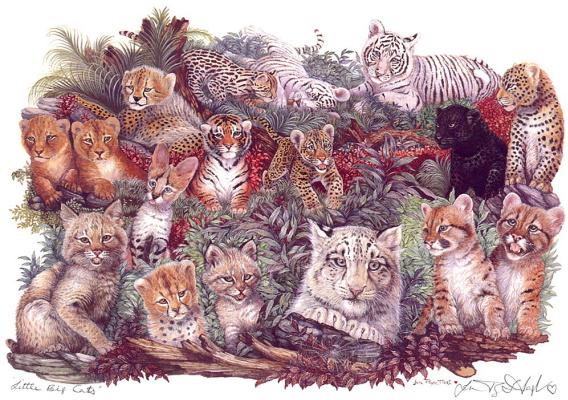 Маленькие и большие кошки