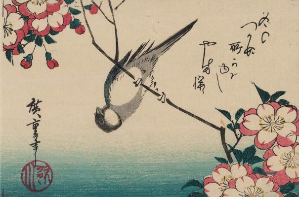Утагава Хиросигэ. Синица, повисшая вниз головой на ветке цветущей вишни