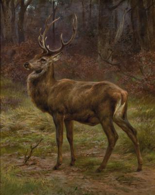 Rose Bonhur. Deer in autumn landscape