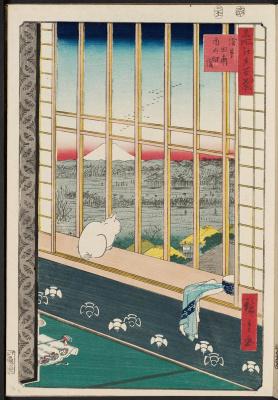 Рисовые поля Асакусы и праздник Ториномаси