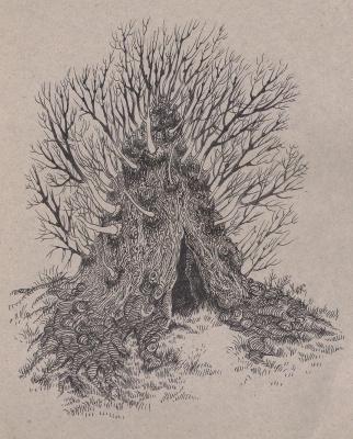 Хиус Мазур. Пещера в дереве