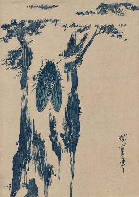 Utagawa Hiroshige. Cicada on a tree trunk