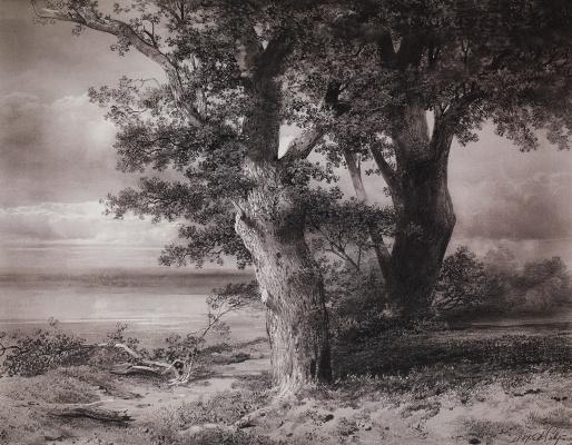 Alexey The Kondratyevich Savrasov. The oaks on the shore