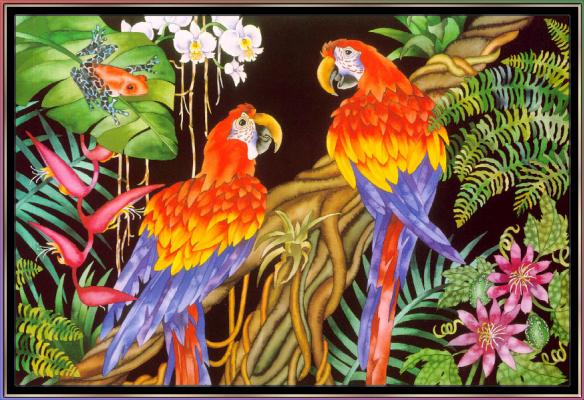 Джуди Вайс. Джуди Вайс. Тропический лес для детей 07