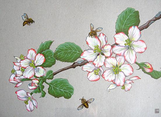 Natalia Vladimirovna Plastinina. Apple Blossom