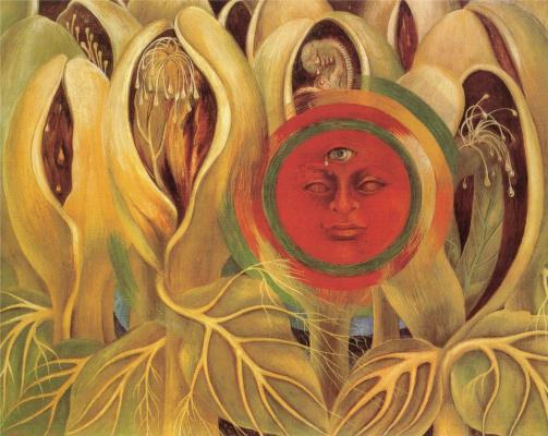 Солнце и жизнь