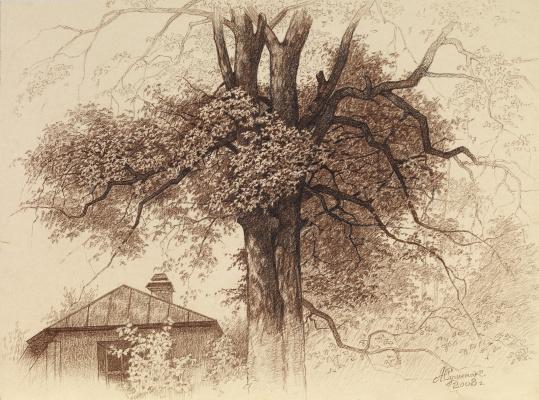 Alexander Mikhailovich Sushenok. Tree