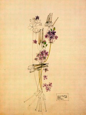 Чарльз Ренни Макинтош. Цветочный мотив 21