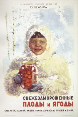 Сергей Георгиевич Сахаров. Свежезамороженные плоды и ягоды. Клубника, малина, вишня, слива, абрикосы, яблоки и дыня