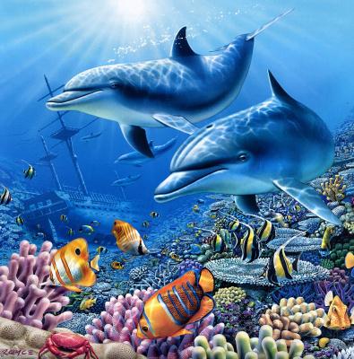 Ройс Макклюр. Дельфины 12