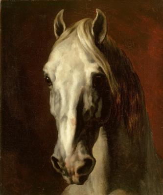 Théodore Géricault. White horse head