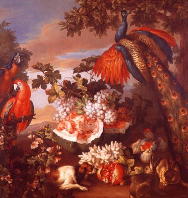 Дж Монноуер. Фрукты и экзотические птицы
