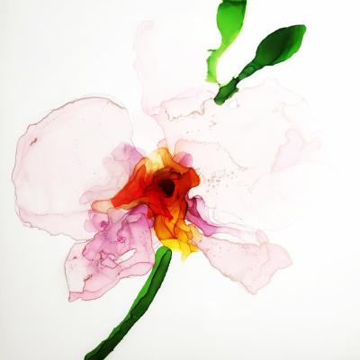 Andrey Valeriovich Sotnichenko. Delicate flower