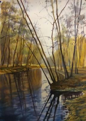 Violetta Dudnikova. Forest Lake