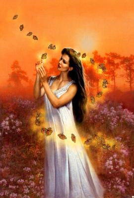 Джуди Йорк. Девушка и бабочки
