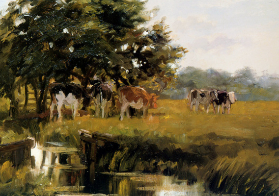 Фрик Энгель. Коровы на лугу