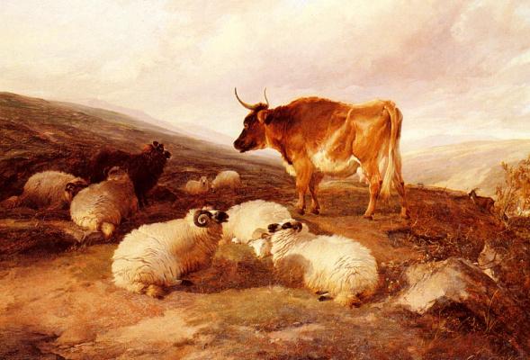 Томас Сидней Купер. Бараны и бык на нагорье