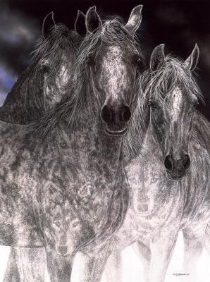 Джуди Ларсон. Бег лошадей