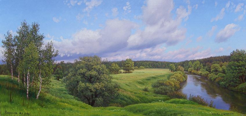 Alexander Vasilyevich Zoryukov. Green meadows Bolva
