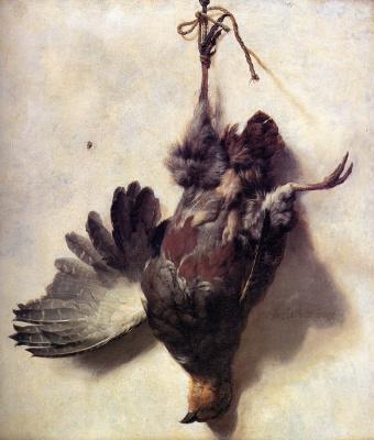 Ян Баптист Веникс. Мертвая куропатка