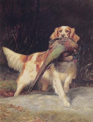 Александр Поп. Спаниель с фазаном