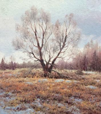 Vasily Ivanovich Gribennikov. Gloomy spring day