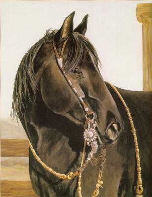 Дебора Дей. Черная лошадь