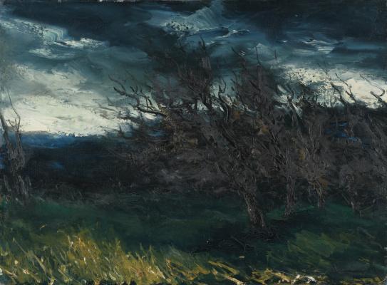 Морис де Вламинк. Пейзаж после грозы