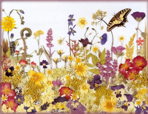 Шерил Уэлч. Цветочный мотив 13