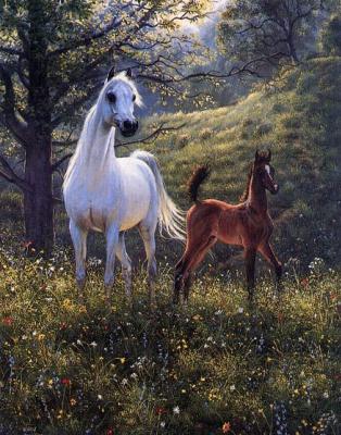 Мэри Хаггард. Белый конь
