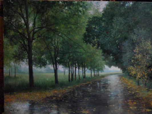 Александр валерьевич петухов. После дождя