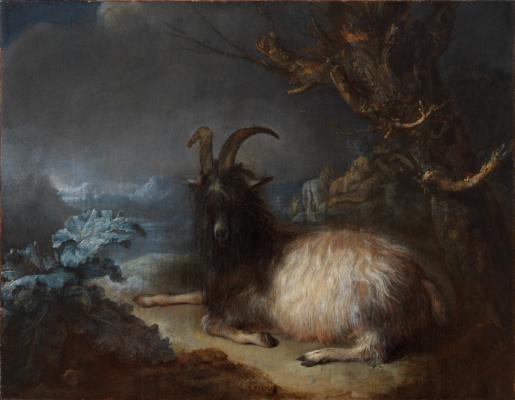 Gerrit (Gerard) Dow. A goat in a landscape