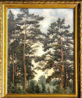 Nikolay Nikolayevich Goloschapov. Pine