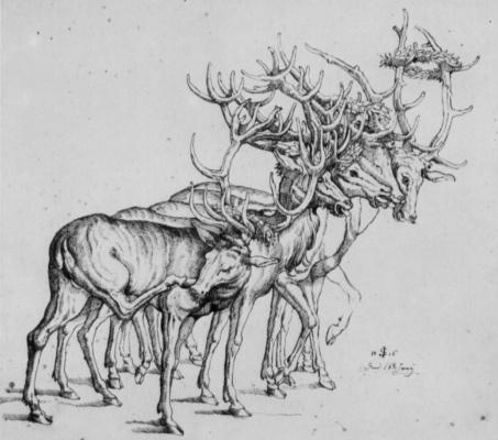 Julius Schnorr von Karolsfeld. Five deer in wreath of leaves