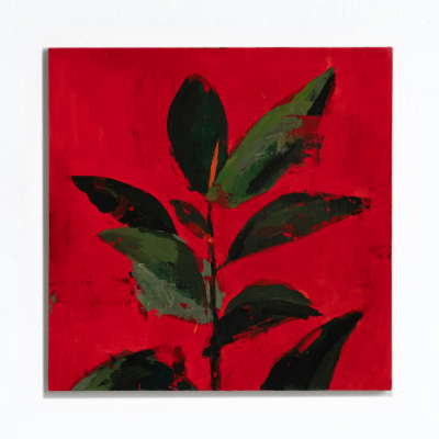 Миша Никатин. Ficus on a red background